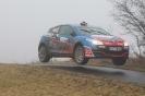 Pfalz-Westrich-Rallye 2012_15